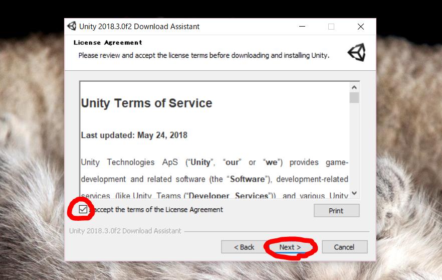Unity License Agreement